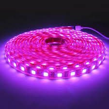 Pink LED Strip_650_650